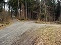 Wilhelmsfeld - Waldweg 2013-03-10 15-02-02.JPG