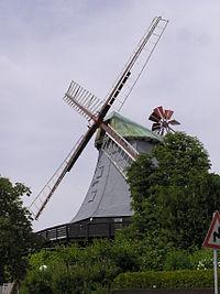 Wim hamfelde P6180048 jm.JPG