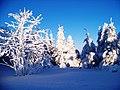 Wintereinbruch auf dem Fichtelberg.JPG