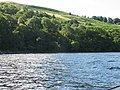 Wooded loch shore - geograph.org.uk - 231930.jpg
