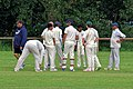 Woodford Green CC v. Hackney Marshes CC at Woodford, East London, England 042.jpg