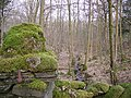Woodland Cartmel Fell - geograph.org.uk - 116577.jpg