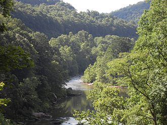 Great Allegheny Passage - View of gorge from bike path