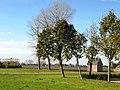 Zedelgem Torhoutsesteenweg landschap - 133192 - onroerenderfgoed.jpg