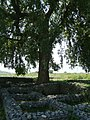 (By @ibnAzhar)-2000 Yr Old Sirkup Remains-Taxila-Pakistan (11).JPG
