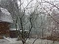 Апрельский снег - panoramio.jpg