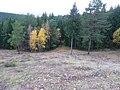 Вид с Андроновских гор, середина сентября 2011 - panoramio (2).jpg