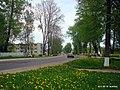 Дорога на Полоцк - panoramio (1).jpg
