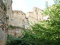 Замок (смт.Клевань), руїни.JPG