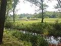 Идиллические картины вблизи Корсуни - panoramio.jpg