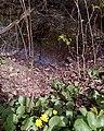 Мраморный пруд в Битце.jpg