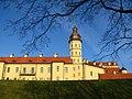 Несвижский замок Радзивиллов. Nesvizhski Radziwill castle. - panoramio.jpg