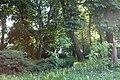 Острозький парк-весняне тепло.jpg