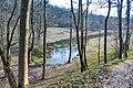 Пруд в долине гор Ореховой и Вороньей.jpg