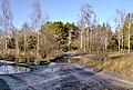 Рання весна у Гідропарку 1.jpg