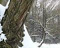 Фото путешествия по Беларуси 047.jpg