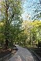 Хрещатий (Купецький) парк IMG 5474.jpg