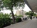 پیاده رو خیابان مجاهدین اسلام - panoramio.jpg