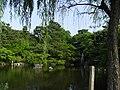 円山公園 - panoramio.jpg