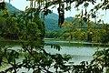 嘉陵风光之苟溪河湿地 - panoramio (1).jpg