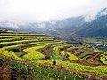 婺源映像(Wuyuan)-6 - panoramio.jpg