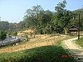 杭州. 半山公园. - panoramio (1).jpg