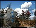 洱海公园里杜鹃园 200802 - panoramio.jpg
