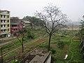 田园 - panoramio.jpg