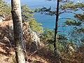 鵜ノ巣断崖展望台右側Unosu-dangai Tenboudai - panoramio.jpg