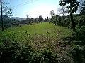 麦田里干农活的的孩子 - panoramio.jpg