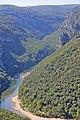 00 0120 Gorges de l'Ardèche.jpg