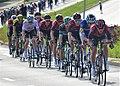 02019 2003 (4) A collected peloton in the 2019 Tour de Pologne.jpg