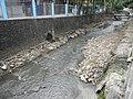 03410jfChurches Bridge West North Avenue Roads Barangays Quezon Cityfvf 07.JPG