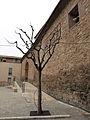 079 Església de Sant Pere d'Or (Santpedor), façana sud.JPG