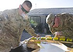 101ST Airborne Division soldiers paint logo 121206-A-VA638-004.jpg