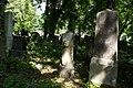15viki Cmentarz żydowski na Ślężnej. Foto Barbara Maliszewska.jpg