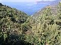 19017 Riomaggiore, Province of La Spezia, Italy - panoramio (3).jpg