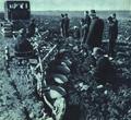1952-05 1952年 国营芦台农场.png