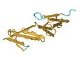 1fbr human fibronectin FourthAndFifthFibronectinTypeIModulePai01.png