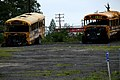 2006-07-20 - US - New York - Long Island - North Fork - Riverhead Raceway - School Buses (4889046130).jpg