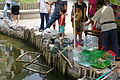 20090726 Shanghai Qibao 2108.jpg