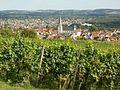 20110816Letzenberg Wein17.jpg