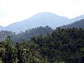2012-02-Sierra Maestra Turquino Nationalpark Kuba 04 anagoria.JPG
