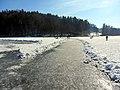 2012 'Seegfrörni' - Türlersee - Hausen am Albis 2012-02-18 12-57-12 (SX230).JPG