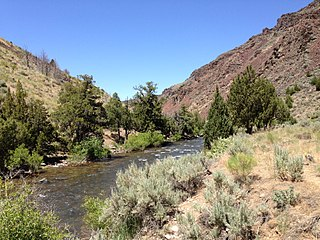 Jarbidge River river in Owyhee County, Idaho and Elko County, Nevada in the United States