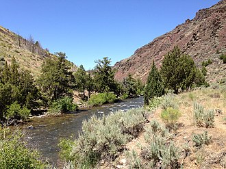 Jarbidge River - View down the Jarbidge River near its confluence with the East Fork Jarbidge River