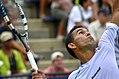2013 US Open (Tennis) - Qualifying Round - Victor Estrella Burgos (9737272329).jpg