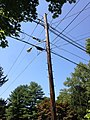 2014-08-27 13 13 50 Utility pole and street lamp at the intersection of Terrace Boulevard and Dunmore Avenue in Ewing, New Jersey.JPG