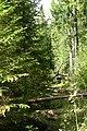 2014-09-04.12-07-29 - panoramio.jpg