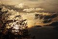 2014 - Sunrise in Haute-Saône - 01.JPG